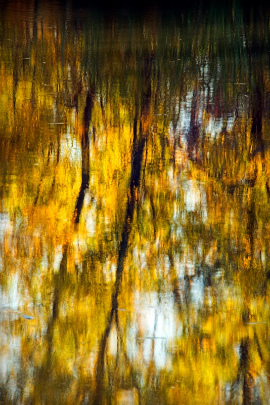 - ID: 13412131 © James R. Lipps