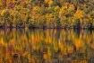Autumn Colors on ...