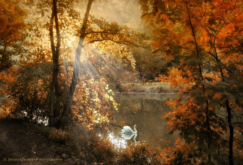 Autumn Afterglow