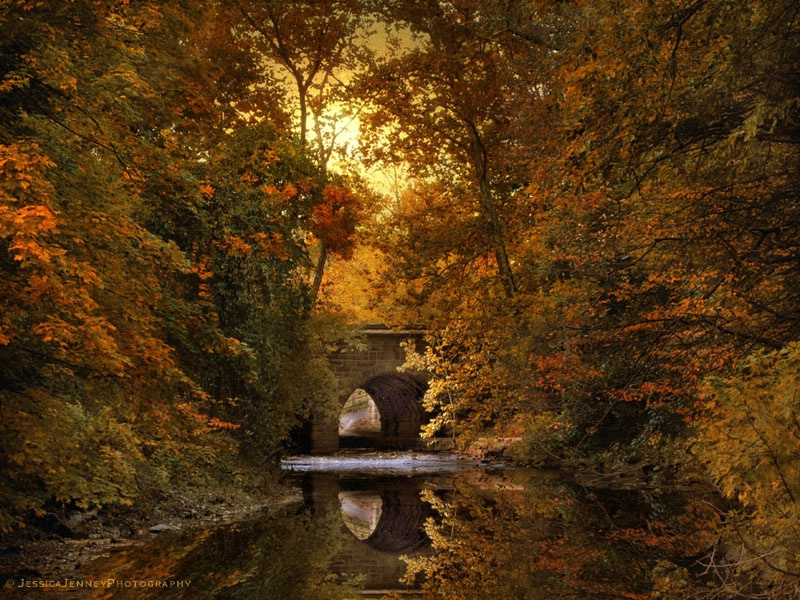 Autumn Country Bridge