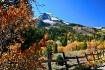 Fall in Utah