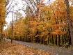 Bear Wallow Road