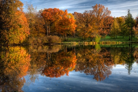 Fall foliage reflected