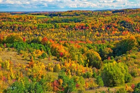 A Boyne Valley Autumn