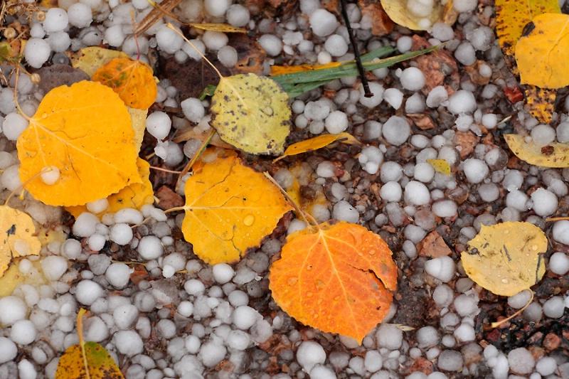 Hail and Aspen