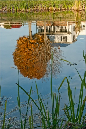 Farmhouse Reflections