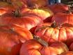 Pumpkin Pie Seaso...