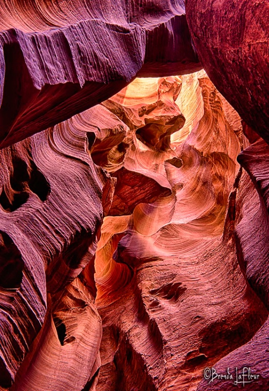Looking Up in Canyon X