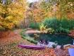 Autumn Tranquilit...