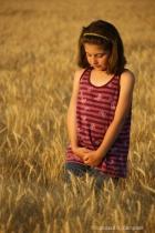 Bailey Walking in the Wheat