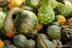 Roadside Gourds i...