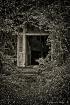 Hidden Entrance