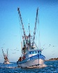 Shrimp Boats Comi...