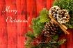 Merry Christmas W...