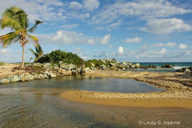 Puerto Rico Pools