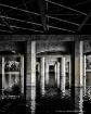 Bridges of Austin...