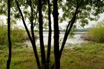 Bybee-Smith Lake, Portland Oregon
