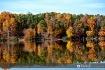 Fall colors 10
