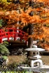 Fall colors 05