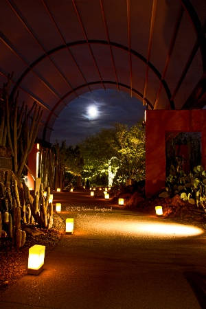 Moonlit Luminarias