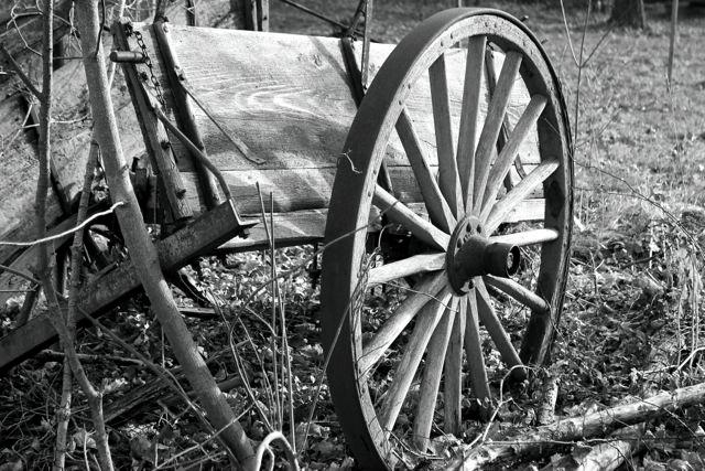 Wheel Less Fortunate