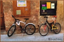European Bikes