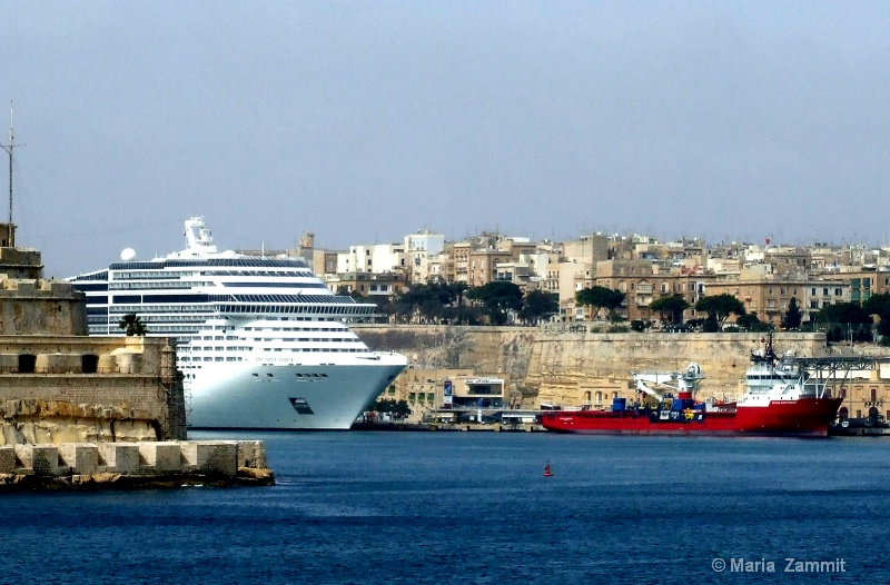 View or cruiseliner terminal from Rinella