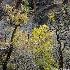 © Hsiao-Tung Yang PhotoID # 13605921: Color of Siwanava Temple
