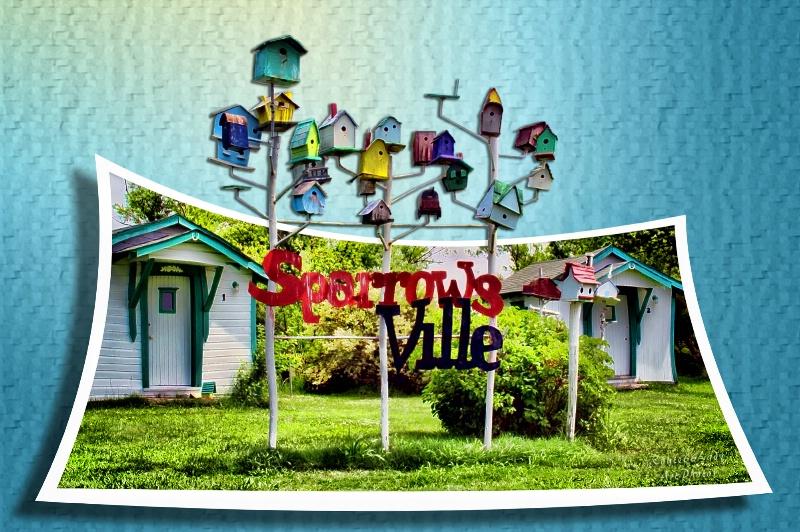 Sparrowsville - ID: 13611438 © JudyAnn Rector