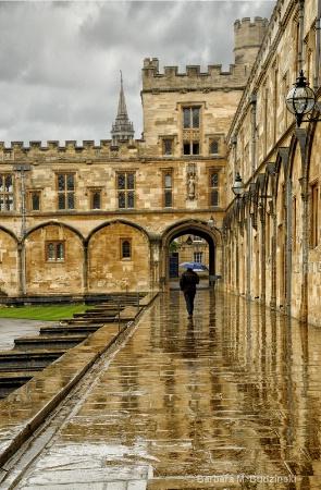 Walking In The Rain......
