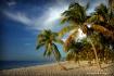 Paradise in Key W...