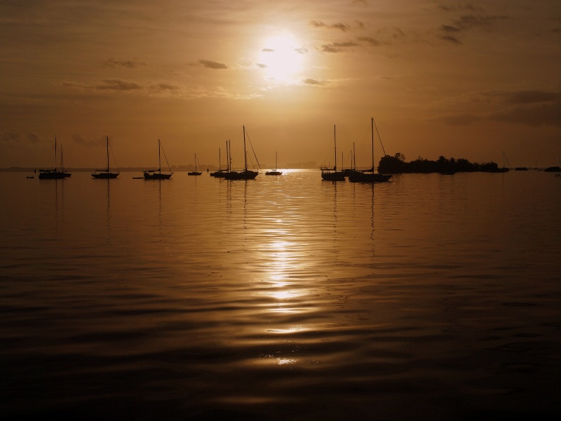 Sunrise of Coconut Grove, FL
