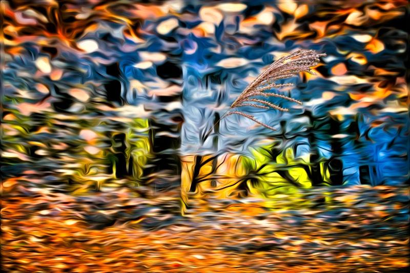Puddle Fantasy Fun - ID: 13630910 © Karen Celella