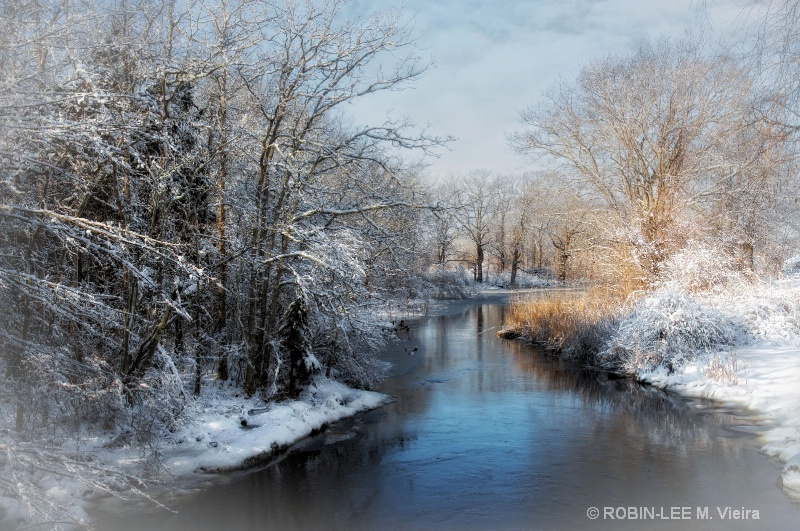 Chilly Brook