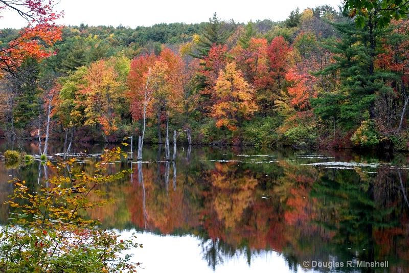 Mirror of Fall - ID: 13631629 © Douglas R. Minshell