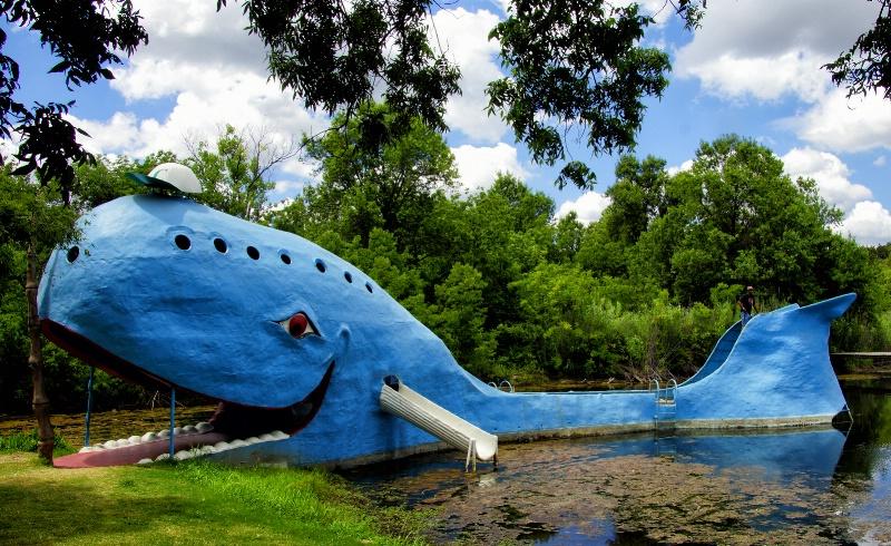 The Blue Whale - ID: 13632287 © JudyAnn Rector