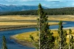 The Yellowstone R...