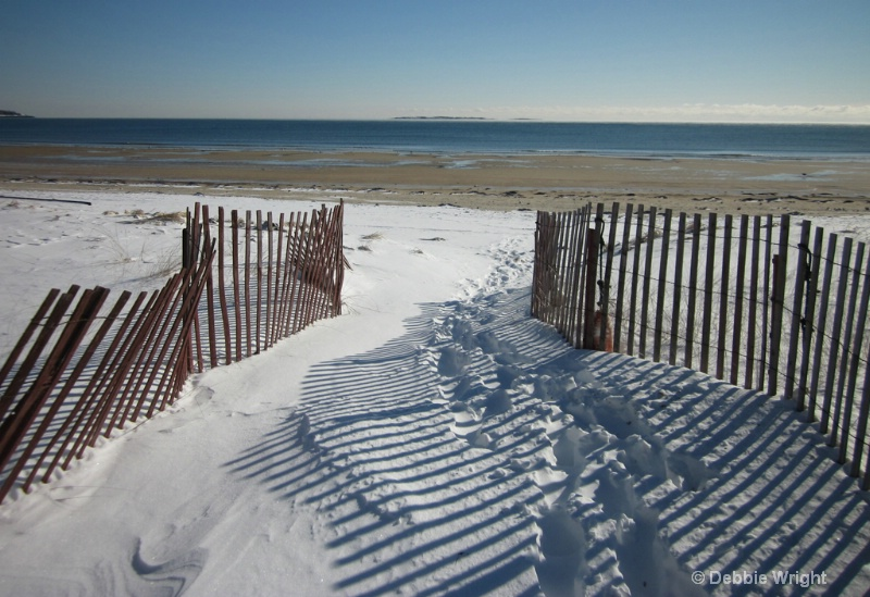 Path to the beach - ID: 13649329 © deb Wright
