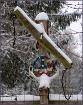 Redneck Winter