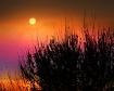 Antelope Island S...