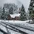 © Martha Chapin PhotoID # 13661396: Yosemite Valley