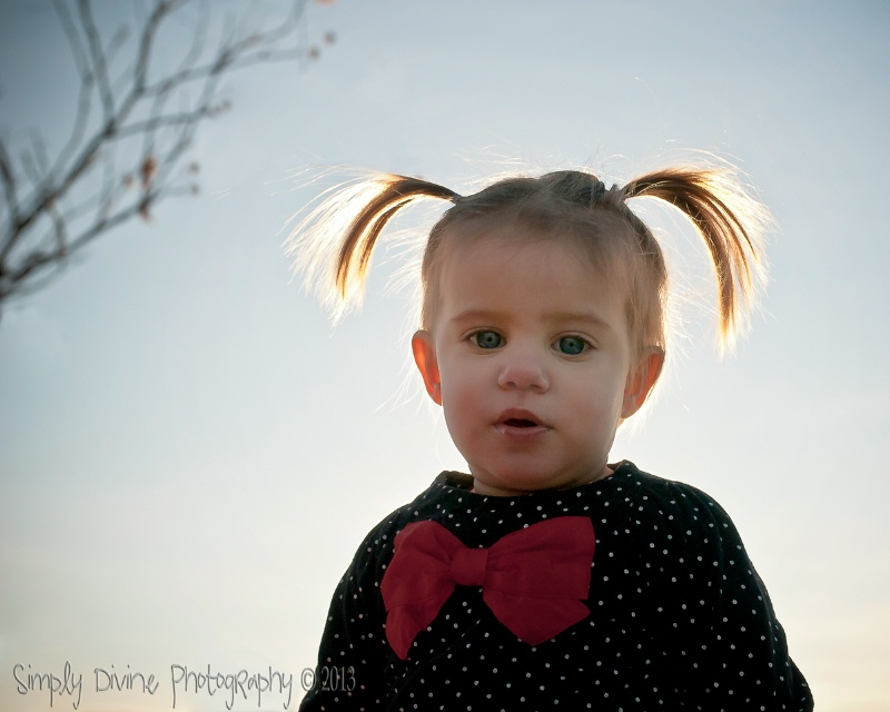 Cute little Piggy Tails - ID: 13671720 © Susan M. Reynolds