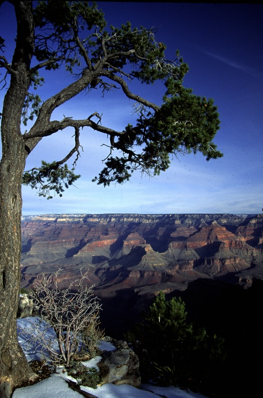 Grand Canyon, framed