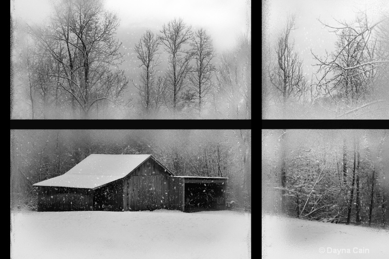 Photography Contest Grand Prize Winner - Snow Day in B&W