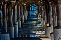 A View Under the Pier
