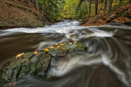 Rush of Fall - CVNP