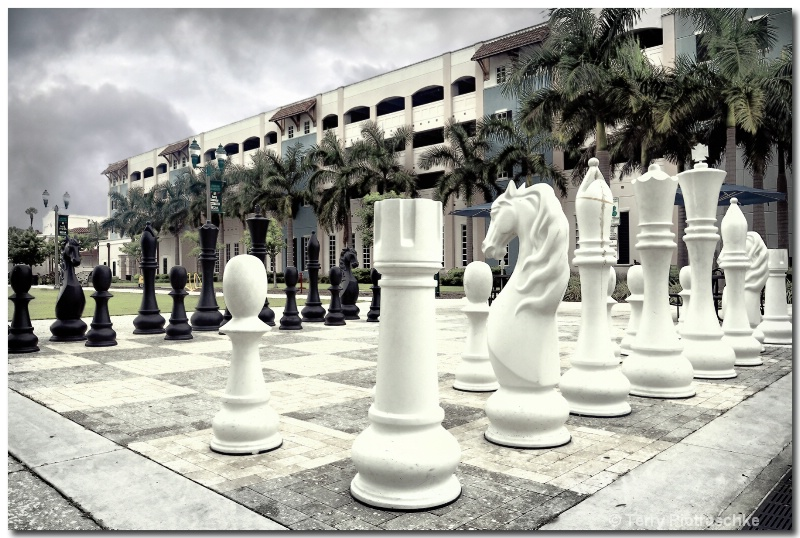 The Big Chess Game - ID: 13694019 © Terry Piotraschke