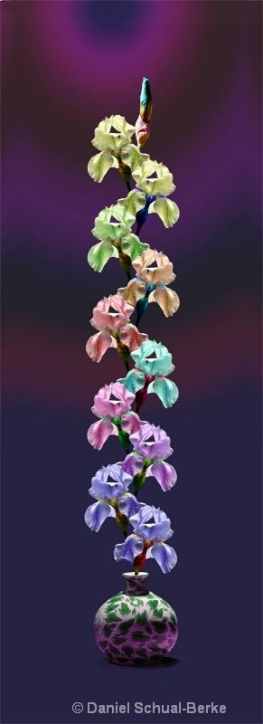 """Iris Multifloraclonicus""  - ID: 13720431 © Daniel Schual-Berke"