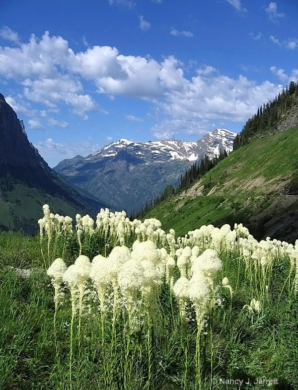 Glacier National Park (edited)