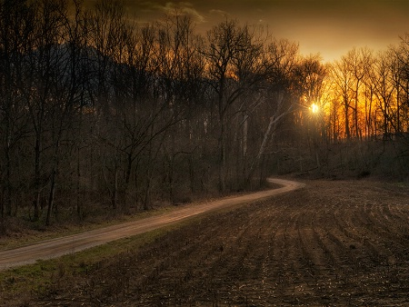 Solitary Lane
